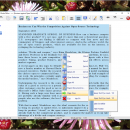 SSuite Writers D-Lite screenshot
