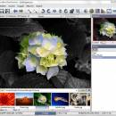 Photo Toolbox screenshot