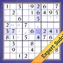 Expert New Years Sudoku screenshot